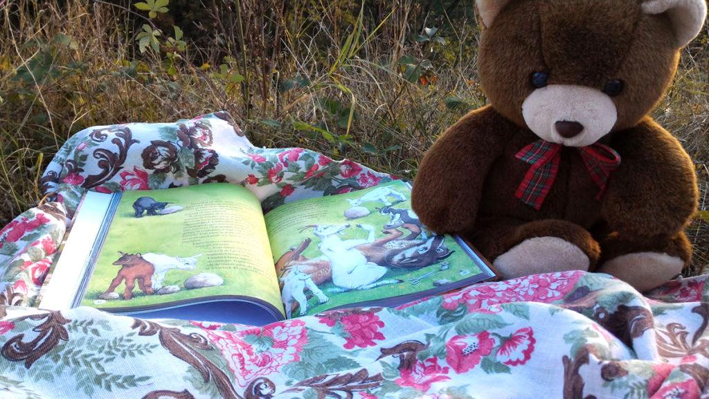 Culegere Povești de Frații Grimm - Editura Corint Junior