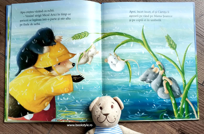 O zi ploioasă, de M. Christina Butler și Tina Macnaughton - Editura InfoDar