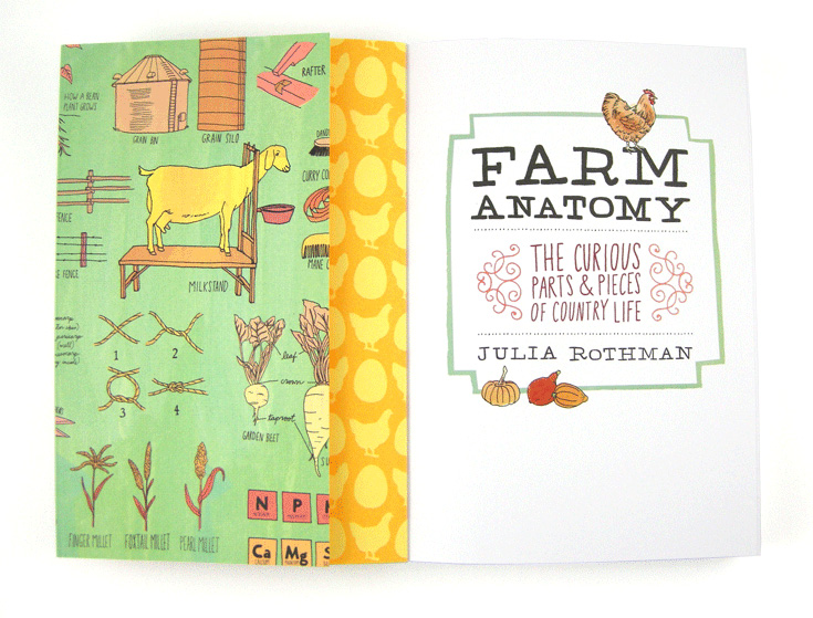 Colecția de cărți Julia Rothman – Nature Anatomy, Food Anatomy, Farm Anatomy – Storey Publishing LLC ISBN-13: 9781612128528