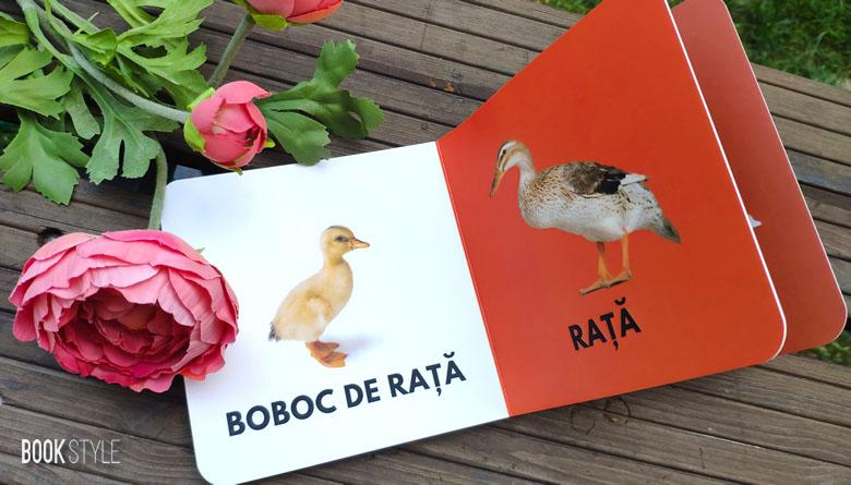 Primele cărți ale bebelușului - Patru cărți de la Editura Bebe Librărie cu animale, emoții și ... exprimarea iubirii