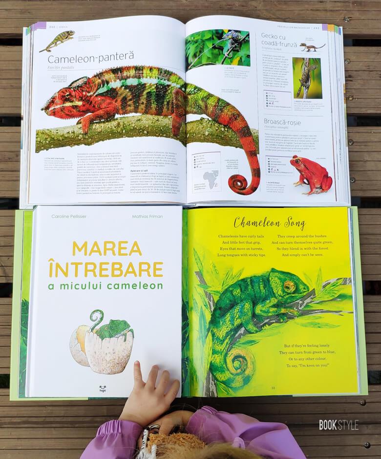 Marea întrebare a micului cameleon, de Caroline Pellissier și Mathias Friman | Editura Hugs