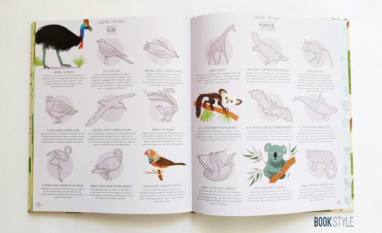 Evoluția. Istoria vieții pe Pământ, de Anna Claybourne și Wesley Robins | Editura Litera