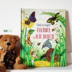 Carte cu clapete: Fluturi și alte insecte, de Emily Bone – Colecția Usborne | Univers Enciclopedic